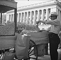 Peanut vendor outside the White House. 8b31574v.jpg