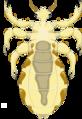 Pediculus humanus adult (01).png