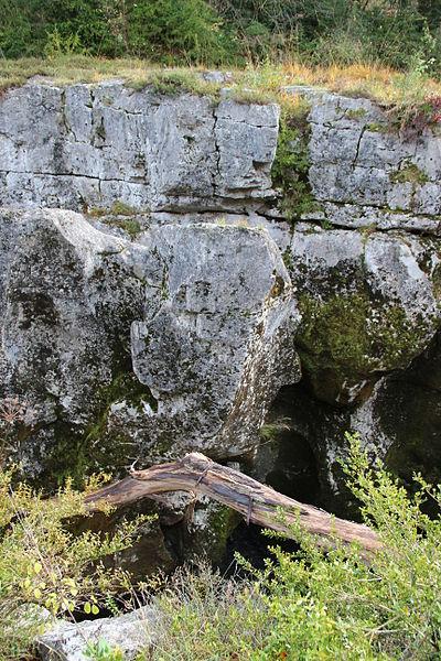 """Pertes de la Valserine. Rock formation called """"Head of Napoleon"""""""