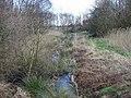 Pestfurlong Moss - geograph.org.uk - 389240.jpg