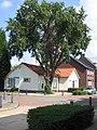 Petrus Polliusstraat 6, Roermond 002.jpg