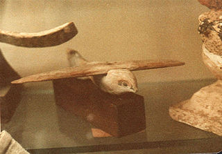 Saqqara Bird bird-shaped artifact made of sycamore wood