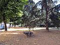 Piazzale donatello, parco.JPG