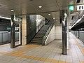 Platform of Nanakuma Station 4.jpg