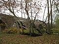 Playwicki Park - Langhorne, Pennsylvania (4071101657).jpg