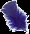 Pluma-azul-2R.png
