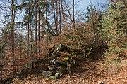 Poertschach Bannwaldweg im Herbst 16112015 9051.jpg