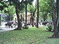 Policiais à cavalo no Jardim da Luz.JPG