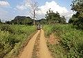 Polonnaruwa, Sri Lanka - panoramio (5).jpg