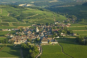 Pommard from Above.jpg
