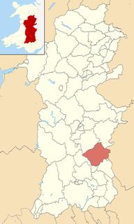 Glasbury (electoral ward)