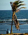 Praia do Jardim dos Namorados - Salvador 2.jpg