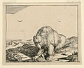 Print, Seated Bear, from a Set o, 1664 (CH 18419961).jpg