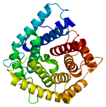 Protein C4A PDB 1hzf.png