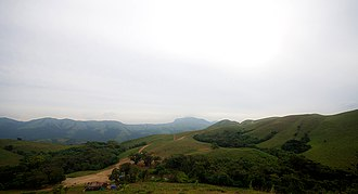 Pushpagiri Wildlife Sanctuary - Landscape of Shola Forests,Pushpagiri WLS