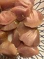 Pylorus of Mugil cephalus as food.jpg