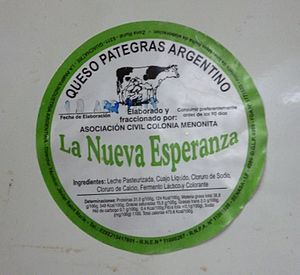 Mennonites in Argentina - A wheel of cheese made by the Mennonites from La Nueva Esperanza.