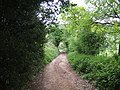 Quiet bridleway on the Clent Hills - geograph.org.uk - 806513.jpg