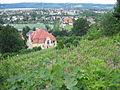Radebeul Villa Schwarze Dach (1).jpg