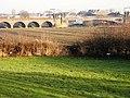 Rail Bridge and Viaduct - geograph.org.uk - 1080483.jpg