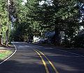 Rainbow Oregon.jpg