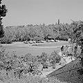 Rehovot. Weizmann Institute enkele medewerkers van het instituut op weg naar he, Bestanddeelnr 255-3885.jpg