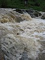 Reka Dičina 5.jpg
