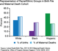 Representation of Texas Racial-Ethnic Groups in Birth File and Maternal Death Cohort 2011-2012.png