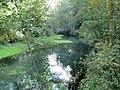 Rhumspringe Rhume Abfluss-Rhumequelltopf Sept-2015 IMG 6693.JPG