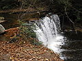 Ricketts Glen State Park Oneida Falls 5.jpg