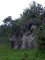Rinntal bei Alfeld 17.jpg
