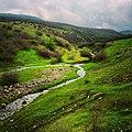 River Bryagovo.jpg