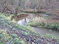 River Deerness west of East Hedleyhope - geograph.org.uk - 1596678.jpg