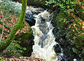 River Erme above Ivybridge 1.jpg