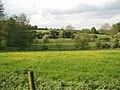 River Ouse Biddlesden - geograph.org.uk - 434323.jpg