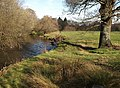 River Teign at Chudleigh Knighton - geograph.org.uk - 1172205.jpg
