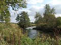 River Trent downstream of Stone - geograph.org.uk - 1540647.jpg