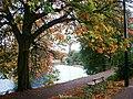 River Wansbeck at Morpeth from Carlisle Park - geograph.org.uk - 137733.jpg