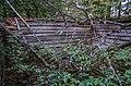 Rožkalnu pagasts, LV-5325, Latvia - panoramio (14).jpg