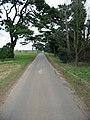 Road across the heath - geograph.org.uk - 8234.jpg