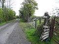 Road at Drumbagh (geograph 2915458).jpg