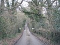 Road to Woodland Head - geograph.org.uk - 1734071.jpg