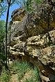 Rohrendorf bei Krems - Naturdenkmal KR-071 - Umgebung der Naturhöhle Steinwandlloch.jpg