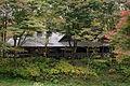 Rokko alpine botanical garden08s2816.jpg