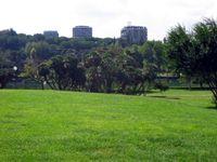 Area verde con laghetto nell'EUR
