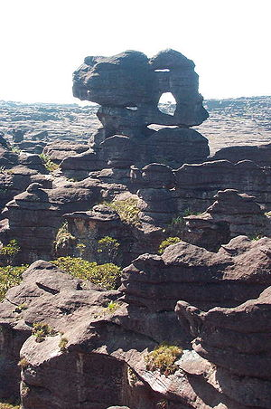 Tepui - The plateau of Mount Roraima. The peculiar rock formation is caused by erosion.