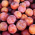 Round red plums 2017 A1.jpg