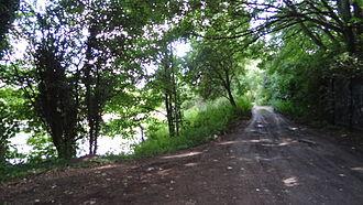 Ruxley - Ruxley Gravel Pits viewed from Edgington Way