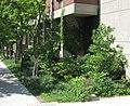SUNY-ESF-rain-garden-2014-b.jpg