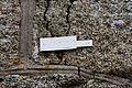 Saint Thegonnec - Enclos paroissial - PA00090441 - 060.jpg